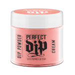 23G BREAK THE MOLD PERFECT DIP POWDER