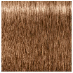 Schwarzkopf Professional Igora Royal Absolutes Age Blend 8-07 Light Blonde  Natural Copper